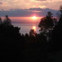 Profil de Nicanor coliñanco